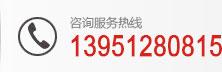 咨询服务热线:13951280815