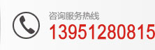 咨询fu务rexian:13951280815